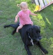 Baby sitting on dog