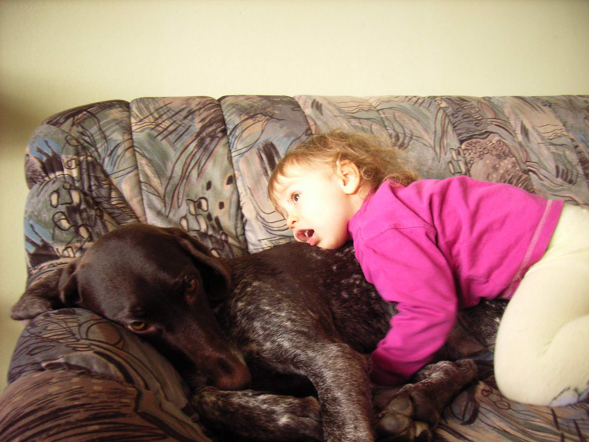 Dogs and children..what is safe and unsafe?
