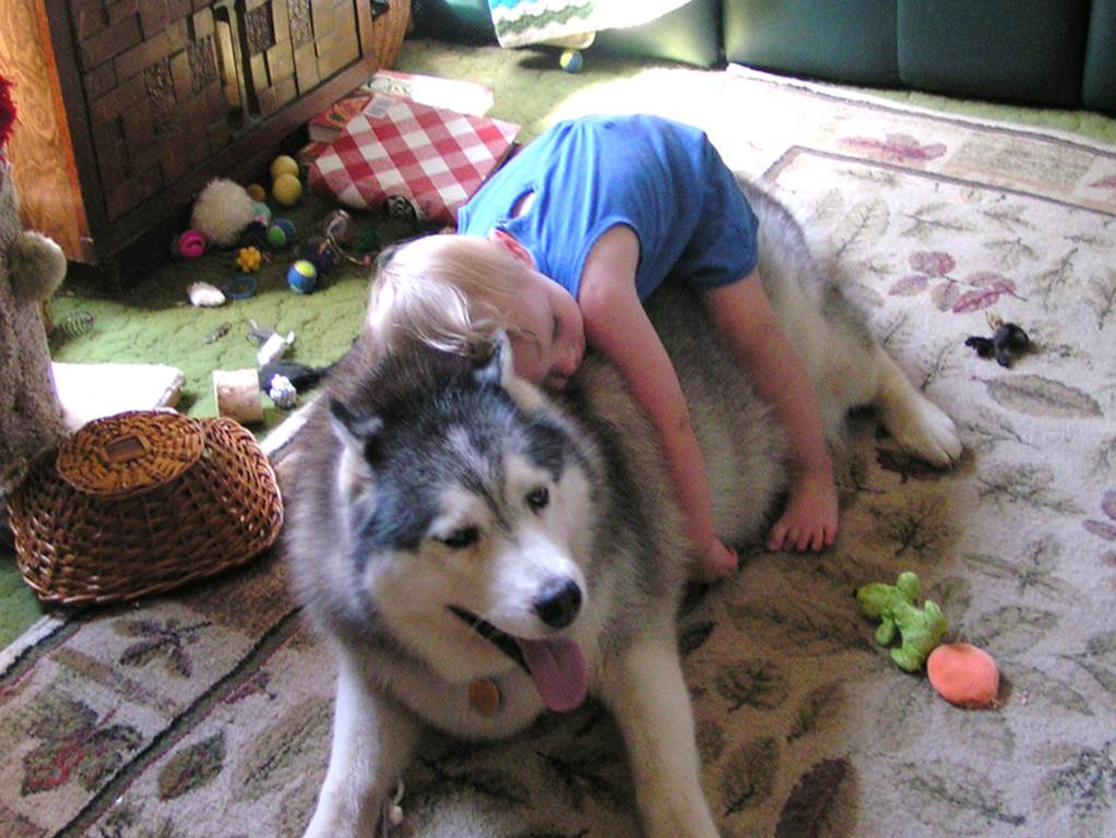 Pets For Kids That Can Not Have Dog Or Cat
