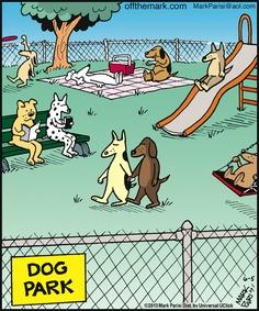 Dog Park Comic 2