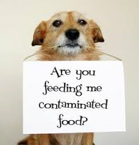 Contaminated food