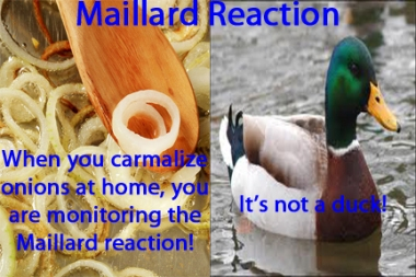 Maillard-reaction-graphic-062912