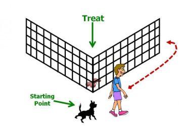 Fence detour task