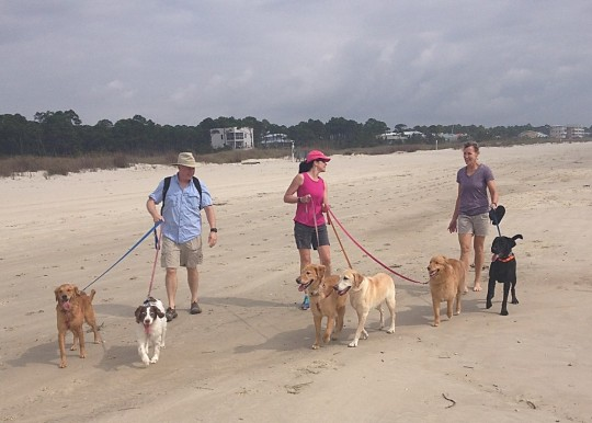linda-mike-karen-dogs-on-beach